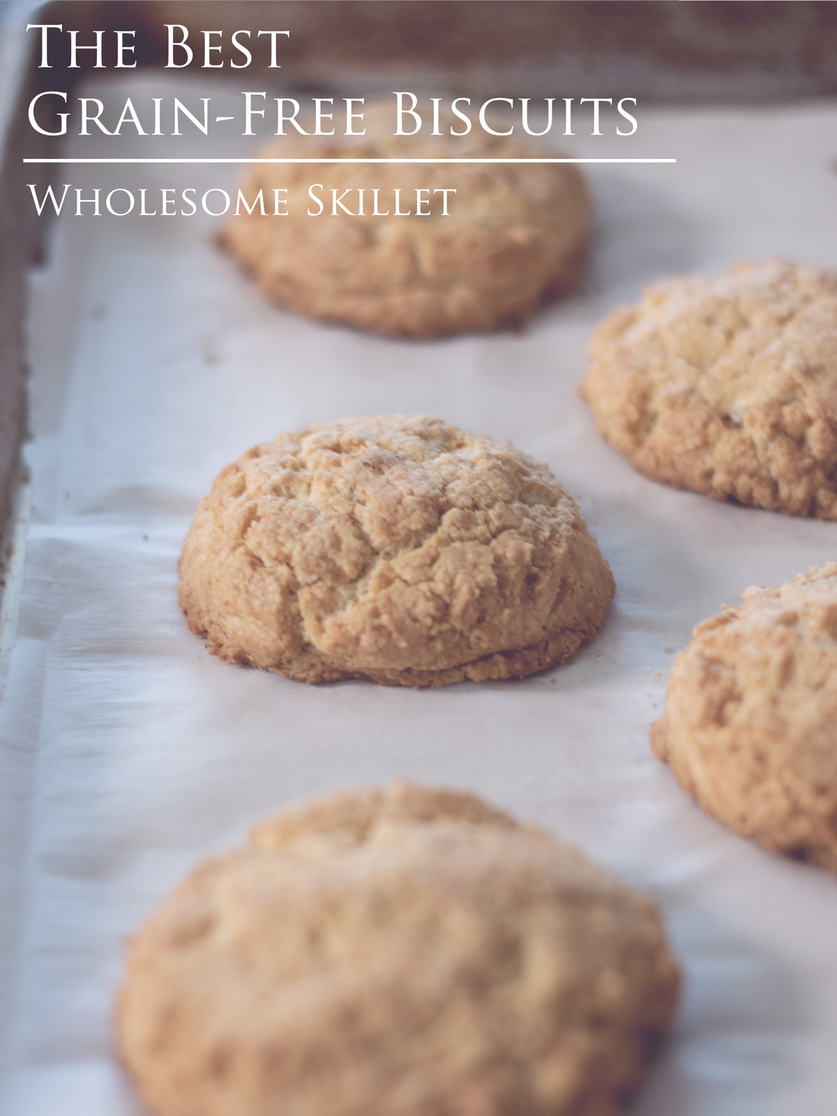 Delicious Grain-Free Biscuits -  An updated twist on a classic, southern staple.  #glutenfree #lowcarb #paleo